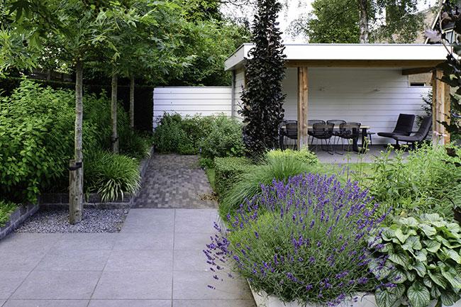 Dutch-Quality-Gardens-Visio-Vireo-Tuinen-ontwerp